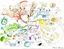 identity map mind map showcasing the s finest mind maps education