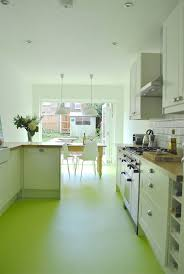 206 best kitchen images on pinterest kitchen modern kitchens modern kitchen in green color inspirations fetching green kitchen design with tan wooden countertop and