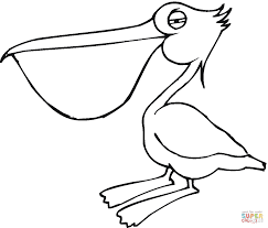 pelican 17 coloring page free printable coloring pages