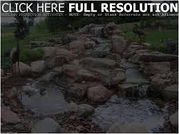 small backyard ponds for sale fish ponds for backyards turtle