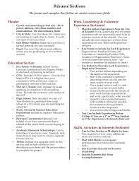 Example Of A College Resume by Leadership Resume Examples For College Resume Ixiplay Free
