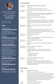 resume samples for servers professional resumes example online