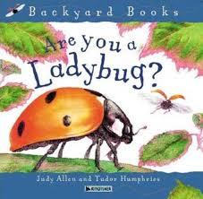 are you a ladybug judy allen macmillan