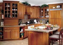 kitchen elegant solid wood kitchen cabinet ideas featuring modern