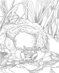images printerable coloring pages coloring pages