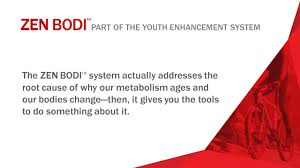 introducing zen bodi a powerful system that targets the ppt