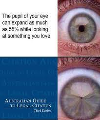 Australian Memes - aunty meme bloggers justinian australian legal magazine news
