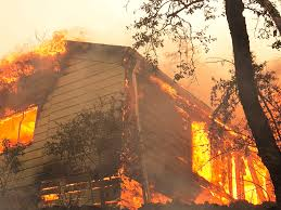 Wildfire Honey by California Wildfires Death Toll Wine Country