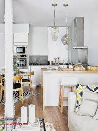 cuisine pour studio amenagement salon cuisine 20m2 pour idees de deco de cuisine