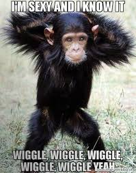 Funny Monkey Meme - chimpanzee clipart ridiculous pencil and in color chimpanzee