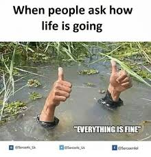 Everything Is Fine Meme - when people ask how life is going everything is fine if v