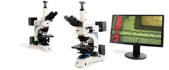 Parts Of A Compound Light Microscope Microscope History Find Out About The History Of Microscope