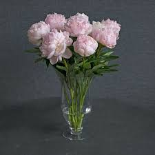 peony bouquet blush pink peony bouquet white flower farm