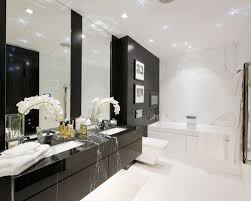 Black And White Bathroom Houzz - White cabinets bathroom design