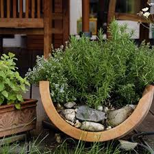 Growing Basil Bonnie Plants by Container Gardening Bonnie Plants