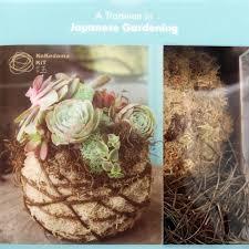 succulent kits kokedama kit 6