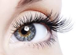 eyelash extensions u2014 pro skincare u0026 day spa