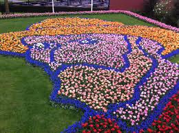 flower garden in amsterdam our wellness revolution amsterdam