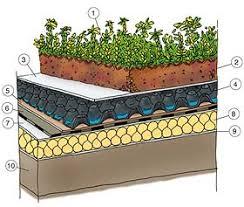 come realizzare un giardino pensile tetti verdi greentips consigli verdi