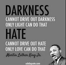 Martin Luther King Day Meme - random memes quotes and junk theweridteenagegirl