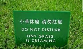 Grass Memes - the best grass memes memedroid