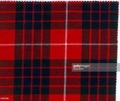 plaid stock photos and pictures getty images