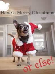 ideas for photo cards with dogs chrismast cards ideas