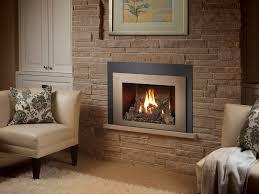 430 gsr gas fireplace insert gas fireplace insert