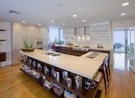 Home Kitchen Design Ideas Kitchen Seattle Premier Penthouse