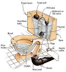 what s d what s trap p toilet cutaway with additional elegant decorations