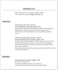 Professional Resume Builder Download Professional Resume Builder Haadyaooverbayresort Com