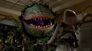 Feed Me Seymour Meme - little shop of horrors remake director refutes casting claims