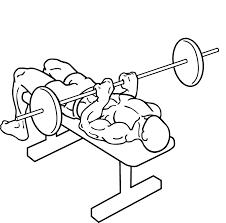 hydraulic bench press gym bench decoration