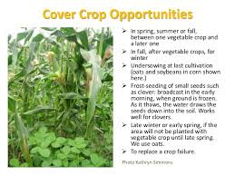 crop rotations for vegetables and cover crops 2014 pam dawling