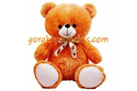 Teddy Bear Delivery 12 Inch Teddy Bear Delivery Gorakhpur Online Add On Online