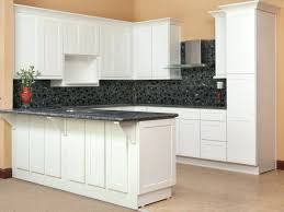discount rta kitchen cabinets lovely best rta kitchen cabinets reviews online design cheap modern