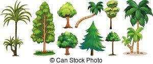 vectors of four types of trees illustration csp45298337 search