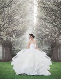 Bridal Consultants 46 Best Hayley Paige Images On Pinterest Wedding Dressses