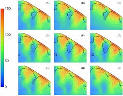 the influence of sulcus width on simulated electric fields induced