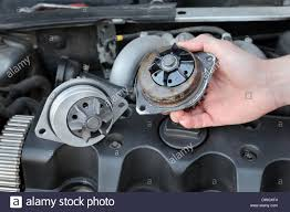 replacing a water pump car mechanic replacing water pump of modern engine stock photo
