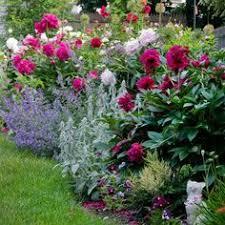 gorgeous old english cottage style flower garden garden