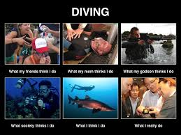 Scuba Meme - scuba diving meme 28 images we re going scuba diving happy
