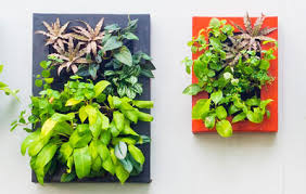 How To Plant Vertical Garden - 3 ways to build an epic vertical garden anywhere rodale u0027s