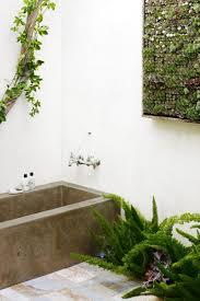 Green Bathrooms Bathroom Wallpaper High Definition Stunning Plants In Bathroom