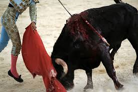 cultural traditions or animal cruelty many still being