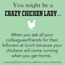 thanksgiving quotes to colleagues naturally loriel you might be a crazy chicken lady if