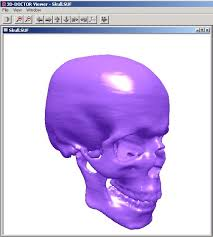 Skull Viewer 3d Doctor Medical Modeling 3d Medical Imaging Free 3d Viewer
