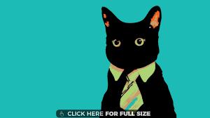 minimalistic minimalistic business cat wallpaper