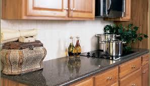 backsplash ideas for oak cabinets exitallergy com