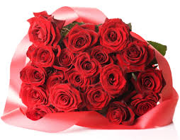 best 25 bunch of red roses ideas on pinterest flower